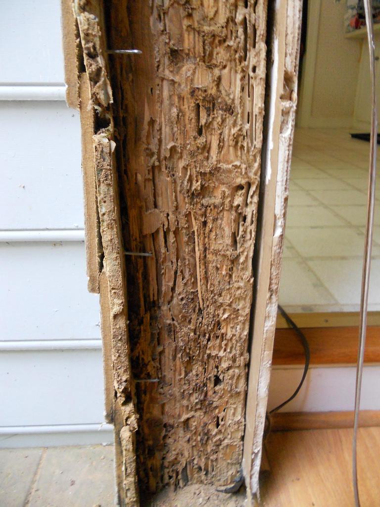 Termite Resistant Wood Teak Bali